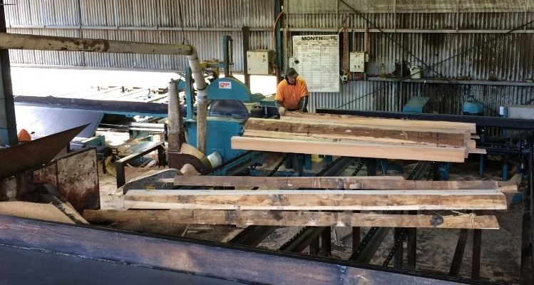Green sawn timber